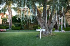 We love the ribbons from Dave & Nicole's wedding!     Outdoor California Wedding at Miramonte Resort and Spa