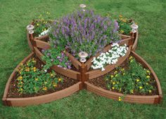 Butterfly raised bed garden