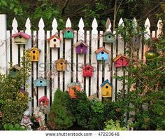 white picket fence adored with colorful birdhouses  *********************************************  Shutterstock - #birdhouse #garden #art  - tå√ birdhouses, colorful birds, white picket fences, little birds, garden art, colors, bird of paradise, bird hous, backyards