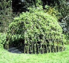 willow den