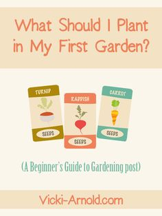 What Should I Plant in My First Garden? - A Beginner's Guide to Gardening