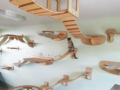 Giant suspended cat playground