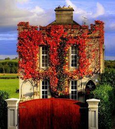 Autumn in England #travel #explore #adventure #aroundtheworld