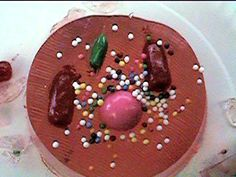 Detailed instructions for an Edible Cell model.  Made with Jello and various candies.