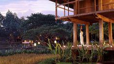 season resort, resort chiang, seasons, resorts, perfect place
