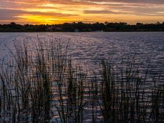 Beautiful sunrises envelope DIY Network Blog Cabin 2014 in this gorgeous collection of photography. Wish you were here in Winter Haven, Florida! #CentralFlorida