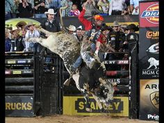 Chris Shivers attempts to ride Monty The Bull. Photo By: Andy Watson/BullStockMedia.com