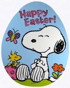 snoopi easter, peanut, easter sunday, happi easter, easter eggs