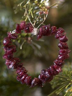 Winter ~ Advent ~ Week Tree: The Light of Bird & Beast ~ Cranberry Hearts ~ Thread thin string through dried cranberries using a needle, secure in a heart shape and finish with a loop.