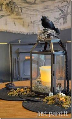 dollar tree, black crow