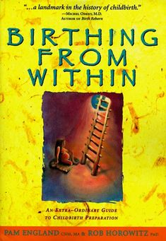 Birthing From Within by Pam England.