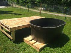 Backyard Doggy Playground ideas