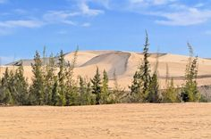 White Sand Dunes in Mui Ne, Vietnam