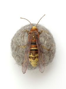 claire moynihan's entomological collections: Hornet (When she lost a small ball of felted wool in her home, Claire Moynihan had no idea that it would change the course of her art. Upon finding the lost ball some time later, she discovered it had moth holes in it and on a whim decided to embroider a moth onto it's surface, making a 'moth ball.')
