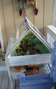"Another small ""greenhouse"" with old windows.  Start in the house, then move outside?"