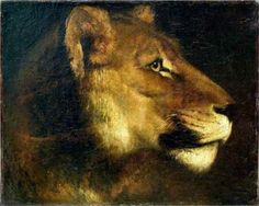 Head of lioness - Theodore Gericault