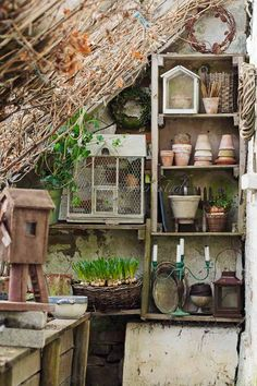 A garden shed hold all sorts of wonderful gardening objects...............