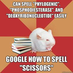 can spell phylogenic phosphodiesterase and deoxyribon - Science Major Mouse