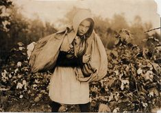 Callie Campbell, 11 years old, picks 75 to 125 pounds of cotton a day, and totes 50 pounds of it when sack gets full Oklahoma, by Lewis W. Hine 1916
