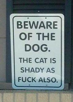 beware of dog. And cat.