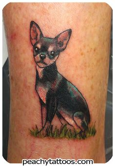 Peachy Tattoos - Peachy Tattoos - Cute Little ChihuahuaTattoo