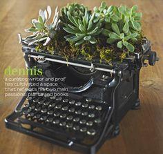 creative indoor succulents