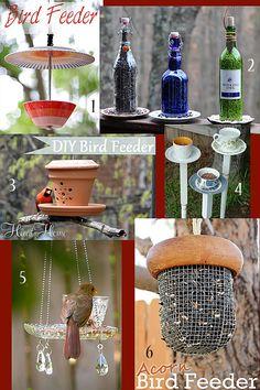 6 DIY Bird Feeders