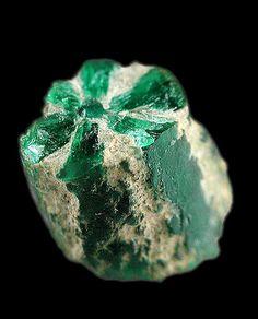 Trapiche Emerald / Columbia