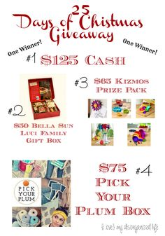25 Days of Christmas Giveaway - {i love} my disorganized life (thru 12/23/13)