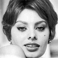 Sophia-Loren-9386318-1-402.jpg 402×402 pixels