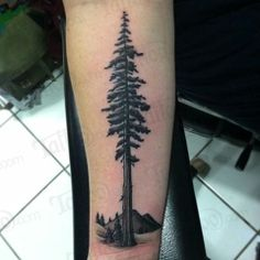 Tattoo ideas on pinterest leaf tattoos tree of life and for Tattoo removal columbus ohio cost