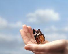 Hoy descubro el valor de las cosas pequeñas y de las maravillas de la naturaleza.
