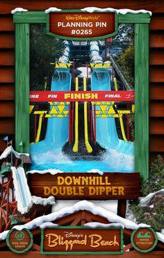 Walt Disney World Planning PIns: Downhill Double Dipper