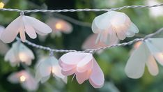 How to make flower fairy lights by homelife.com.au #DIY #Fairy_Lights #homelife_com_au