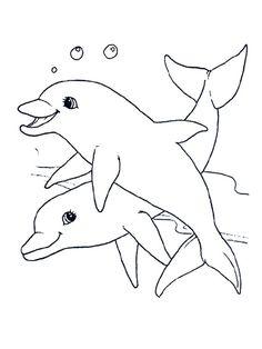 Dolfijn On Pinterest Dolphins Google Drive And Digi Stamps