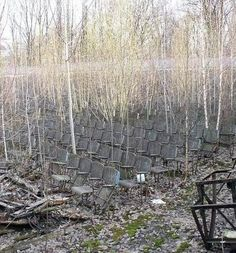 russian forest, outdoor seating