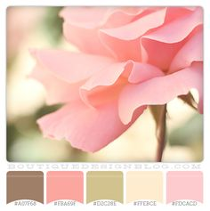 brown green and coral color scheme | Perfectly Pink color scheme with soft pink, brown and green - Boutique ...