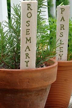 herb plant markers ..