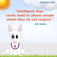 """""""Intelligent dogs  rarely want to please people  whom they do not respect.""""  -W.R. Koehler"""
