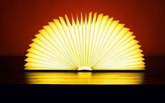 This is a book - until you open it up - then it becomes a lamp.