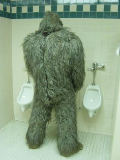 Big Foot - Would constantly forget to flush!!