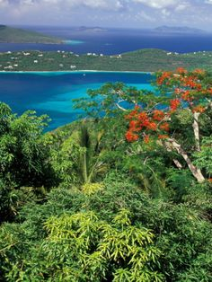 Magen's Bay, St Thomas-one of the most beautiful beaches in the world