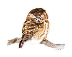Owl Art for Woodland Nursery Baby Girl Owl by TinyToesDesign, $24.00