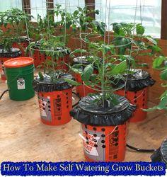 How To Make Self Watering Grow Buckets