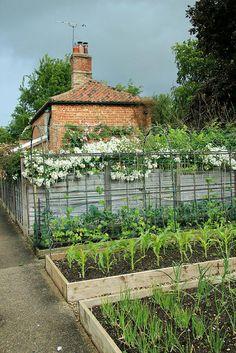 Chippenham Park Gardens - veg raised beds
