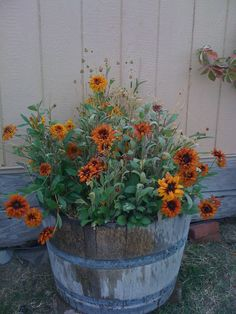 Old Wooden Tub...filled with fall flowers.