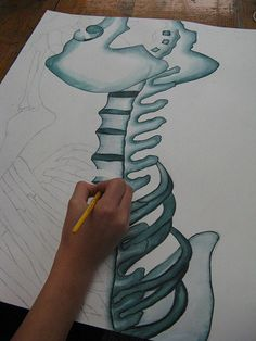 The student will use observational skills to draw a section of the skeleton model. They are to think in the terms of shape and form. The student will use a water base marker to outline then apply a wet brush to render the bones.