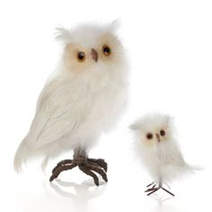 White Feathered Owls - Set of 2 from Z Gallerie