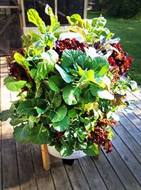Garden Tower - neat idea based around worm composting core