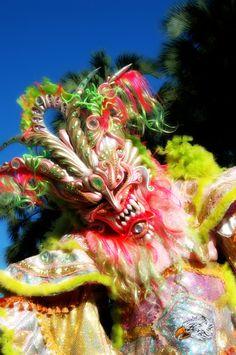 Carnival of Santo Domingo